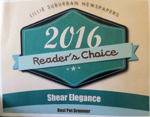 2015 Readers Choice Award Best of the Community Pet Grooming