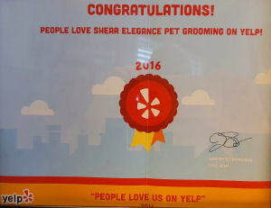 2016 Award from Yelp